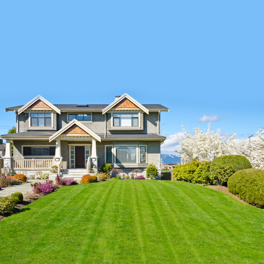 What can Martinez Tree & Lawn Service do for your lawn?